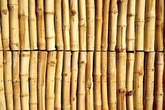 Le mur en bambou Photo stock