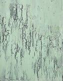 Le mur en bois avec la peinture blanche est sévèrement survécu et épluchage Image libre de droits
