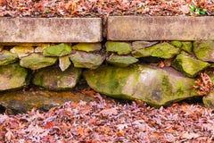 Le mur en pierre et sèchent des feuilles Photographie stock