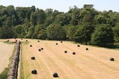 Le mur et les terres cultivables de Hadrian Photo stock