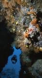 Le mur jaune du Fiji Image libre de droits