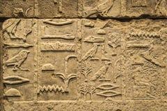 Le musée égyptien de Berlin en Allemagne Image libre de droits