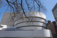 Le musée circulaire de Guggenheim New York City avec du Br d'arbre de ressort photographie stock