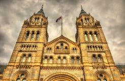 Le musée d'histoire naturelle à Londres Image stock