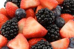 leśna owoców Zdjęcie Royalty Free
