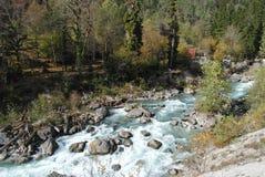 leśna sceniczna wodospadu fotografia stock