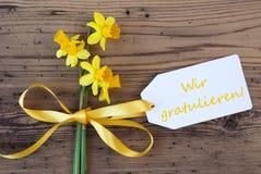 Le narcisse jaune de ressort, label, Wir Gratulieren signifie des félicitations image stock