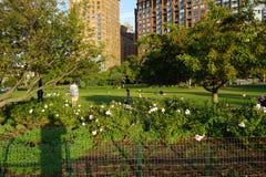 Le Nelson un parc 30 de Rockefeller images libres de droits