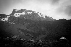 Le nevi di Kilimanjaro Fotografia Stock