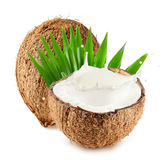 Le noci di cocco con latte spruzzano e coprono di foglie isolato su fondo bianco Fotografia Stock
