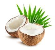 Le noci di cocco con latte spruzzano e coprono di foglie isolato su fondo bianco Fotografia Stock Libera da Diritti