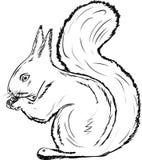 Le noci di rosicchiamento dello scoiattolo su priorità bassa bianca Fotografie Stock Libere da Diritti