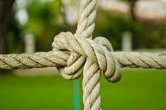 Le noeud de corde image stock