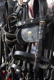 Le noir fait main a coloré les harnais en cuir pour des cavaliers à vendre à Images stock
