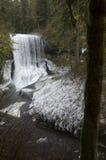 Le nord moyen tombe le parc d'état argenté d'automnes Photos stock