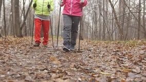 Le nordic marchant en parc d'automne - deux dames supérieures pluses âgé ayez la formation extérieure - des jambes se ferment  photographie stock