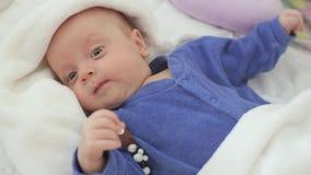 Le nouveau-né est éveillé dans la huche banque de vidéos