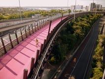 Le Nouvelle-Zélande : chemin Auckland h de vélo Photos libres de droits