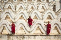 Le novice trois de Myanmar montaient la pagoda photographie stock libre de droits