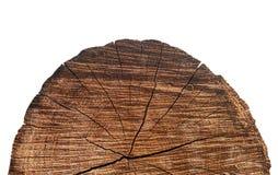 Le noyau du vieil arbre avec le plan rapproché de fissures photos libres de droits