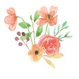 Le nozze di Poppy Bouquet Summer Spring Leaf dell'acquerello lasciano il fogliame dipinto a mano Immagini Stock