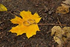 Le nozze dorate due sono foglia di acero gialla Fotografia Stock Libera da Diritti