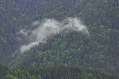 Le nubi coprono le montagne Immagini Stock