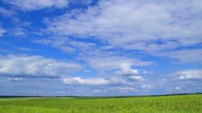 Le nuvole del cielo funzionano velocemente archivi video