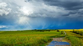 Le nuvole tempestose si spostano per rapidamente i campi verdi di giovane grano, accesi da luce solare, durante la tempesta 4K Ti video d archivio