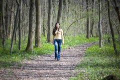 leśny spacer Fotografia Royalty Free