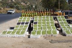Le olive fresche su esposizione su un lato della strada stanno, la Giordania Immagini Stock