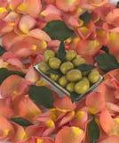 Le olive verdi sono un prodotto naturale Immagini Stock