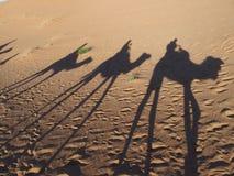 Le ombre del caravan dei cammelli sulle dune sabbiose di ERG CHEBBI del deserto del Sahara abbelliscono al villaggio di Merzouga  immagini stock