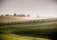 Le ombre lunghe del cavallo recinta la nebbia Fotografia Stock Libera da Diritti