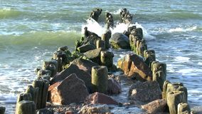 Le onde della rottura del Mar Baltico su un vecchio frangiflutti di legno stock footage