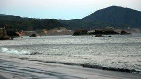 Le onde di oceano sulla spiaggia con l'albero hanno coperto le colline stock footage