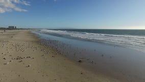 Le onde spumose avvolgono delicatamente al litorale video d archivio