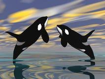 Le orche saltano - 3D rendono illustrazione vettoriale