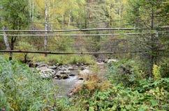 Le origini del fiume di Belokurikha nelle montagne di Altai Fotografia Stock Libera da Diritti
