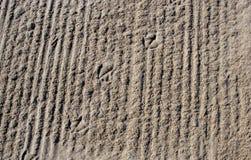 Le orme dell'uccello del gabbiano nella sabbia Immagini Stock