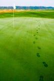 Le orme sul golf erba vicino alla bandiera in rugiada Fotografie Stock Libere da Diritti