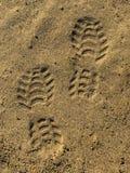 Le orme sulla sabbia bagnata Immagine Stock