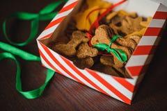Le ossa di cane casalinghe hanno modellato i biscotti in scatola aperta Immagine Stock