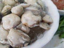 Le ostriche, indennità-malattia migliorano la funzione sessuale, stimolano il sistema riproduttivo immagine stock