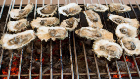 Le ostriche sono cucinate sulla griglia Immagini Stock