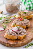 Le pâté di canard sur le pain frais de tranches avec les herbes et la maison de radis a fait le style Photos stock