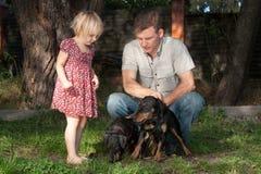 Le père avec le regard de fille à deux chiens Jagdterriers Photo stock