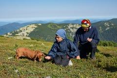 Le père et le fils avec le petit chien drôle rassemblent et mangent des myrtilles Photos stock