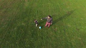 Le père et le fils combattant avec certains s'embranche vue aérienne banque de vidéos