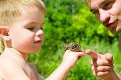 Le père et le fils considèrent la grenouille Photographie stock